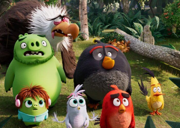 Family Film   Angry Birds