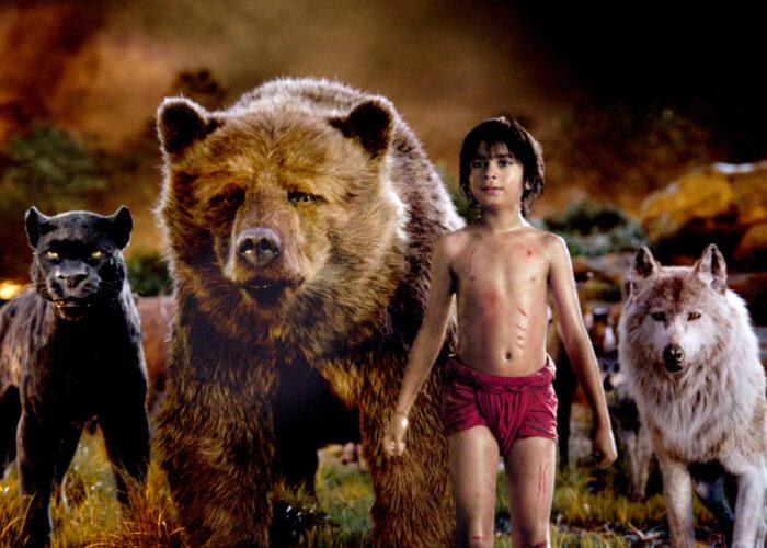 Family Film   The Jungle Book