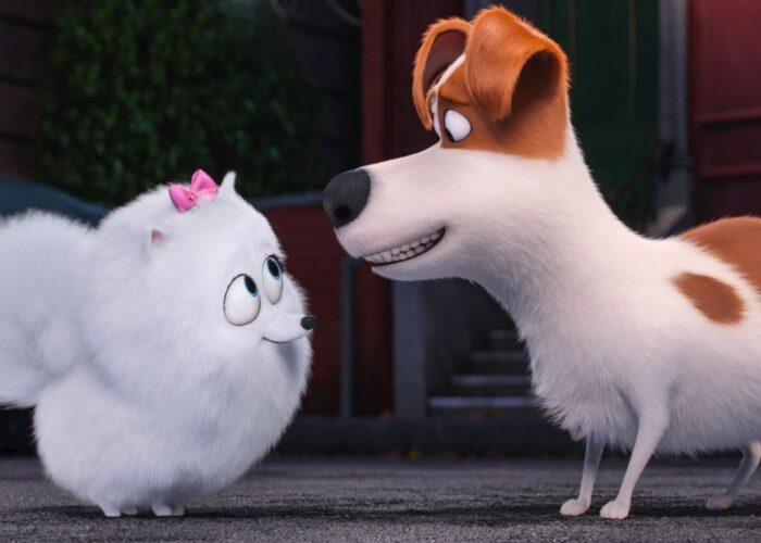 Family Film   The Secret Life of Pets